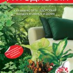 Фитодизайн. Как вырастить здоровый воздух в офисе и дома